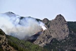 Técnicos no creen que incendio de La Gomera quede estabilizado a corto plazo